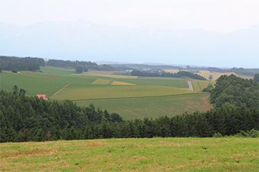 Sanai Hill