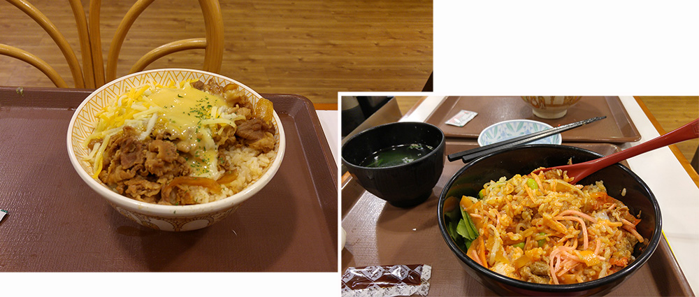 Dinner at Sukiya (¥ 1650)