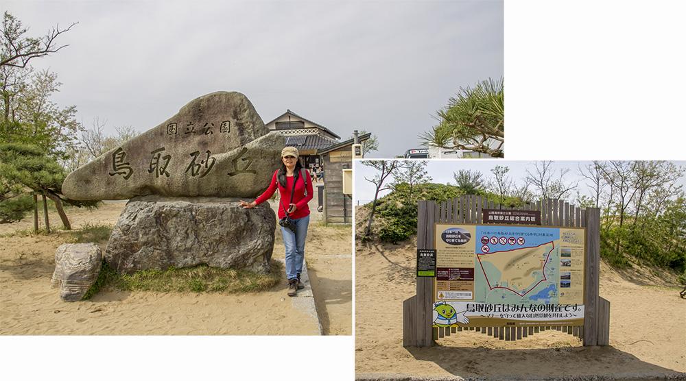 Tottori Sand Dune (16 km by 2 km)