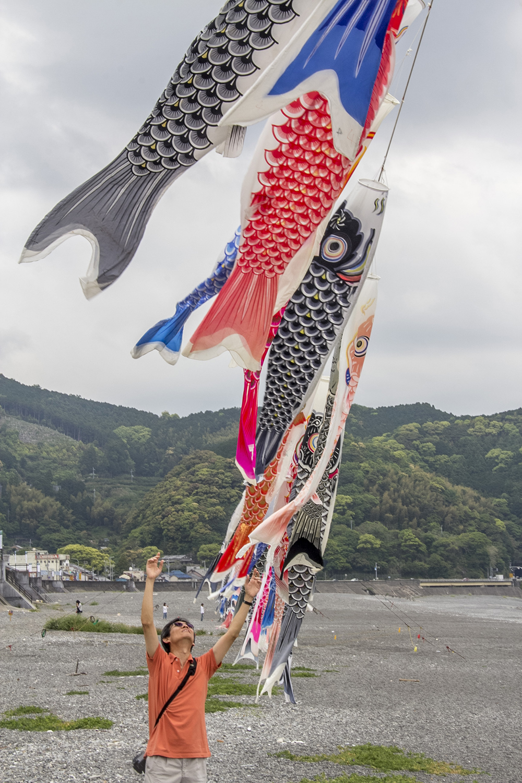 """""""Carp"""" kites"""