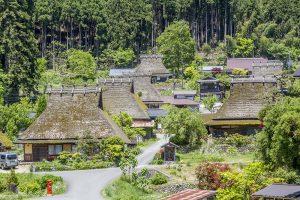 Kayabuki no Sato (Thatched Roof village)