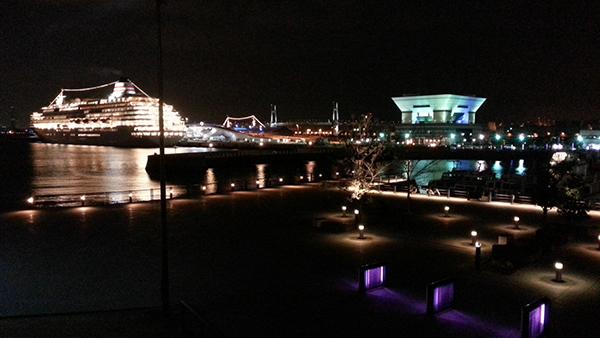 Cruise Ship docked at Yokohama Port