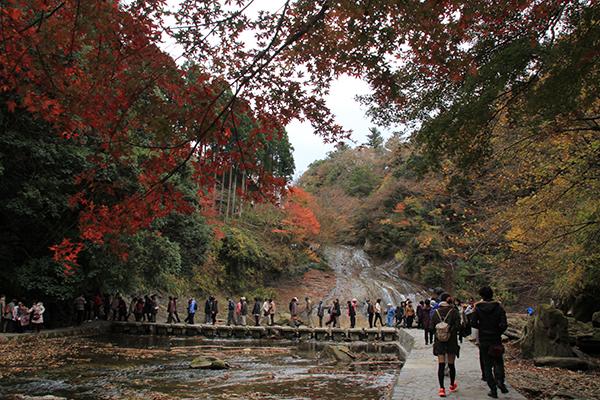 Awamata Falls (Awamata no taki)