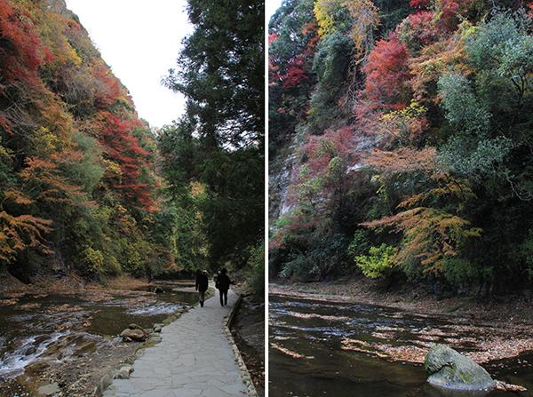 Koyo valley walk toward Awamata Falls