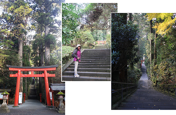 Steps leading up to Hakone Shrine