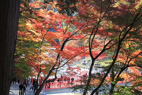 Taigetsukyo Bridge at Korankei Gorge