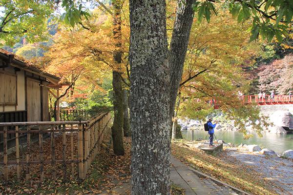 Hut near Taigetsukyo Bridge