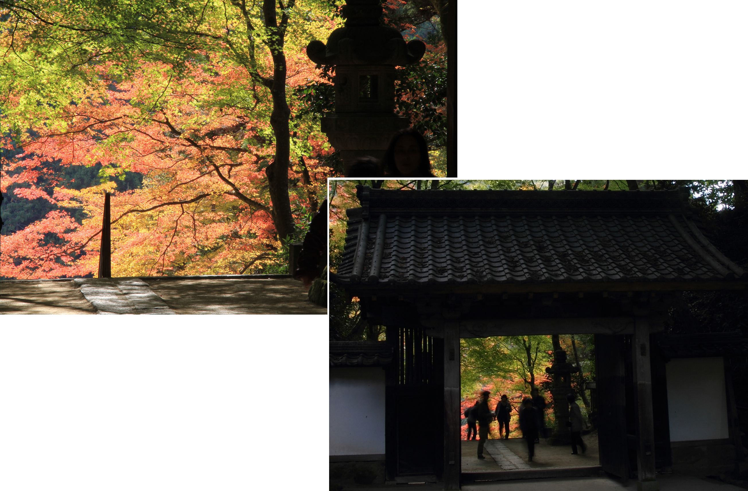 Top of stairs of Kojakuji Temple