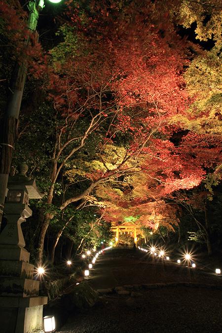 Slope up to the 2nd torii gate of Hiyoshi Taisha