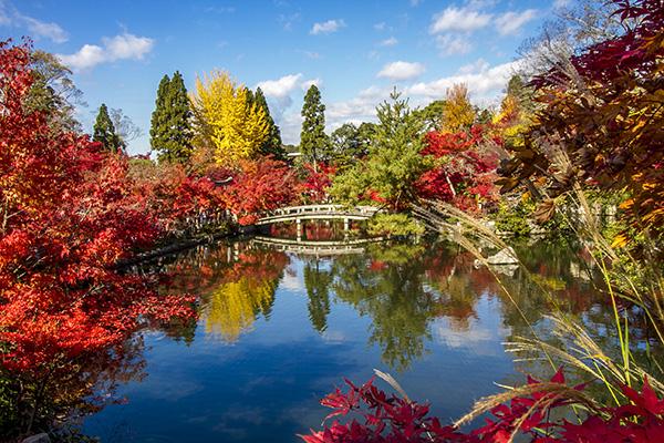 Hojo Ike Pond