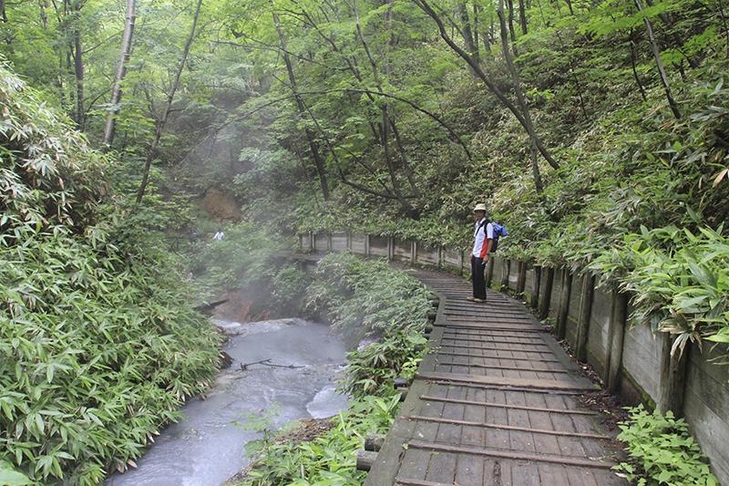 Boardwalk along Oyunuma Stream