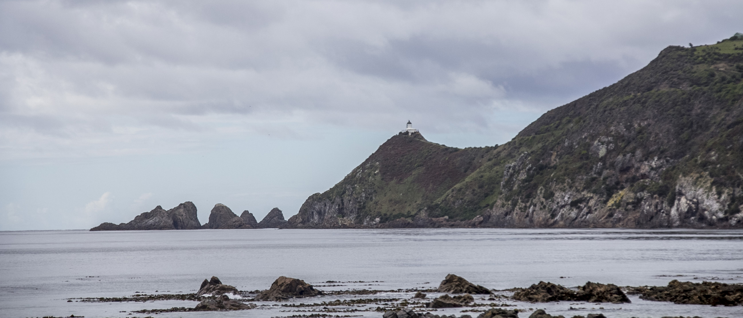 Coastal View of Nugget Point Lighthouse