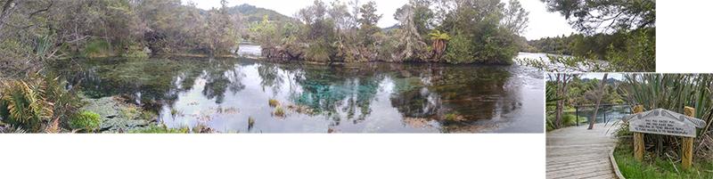Te-Waikoropupu Springs