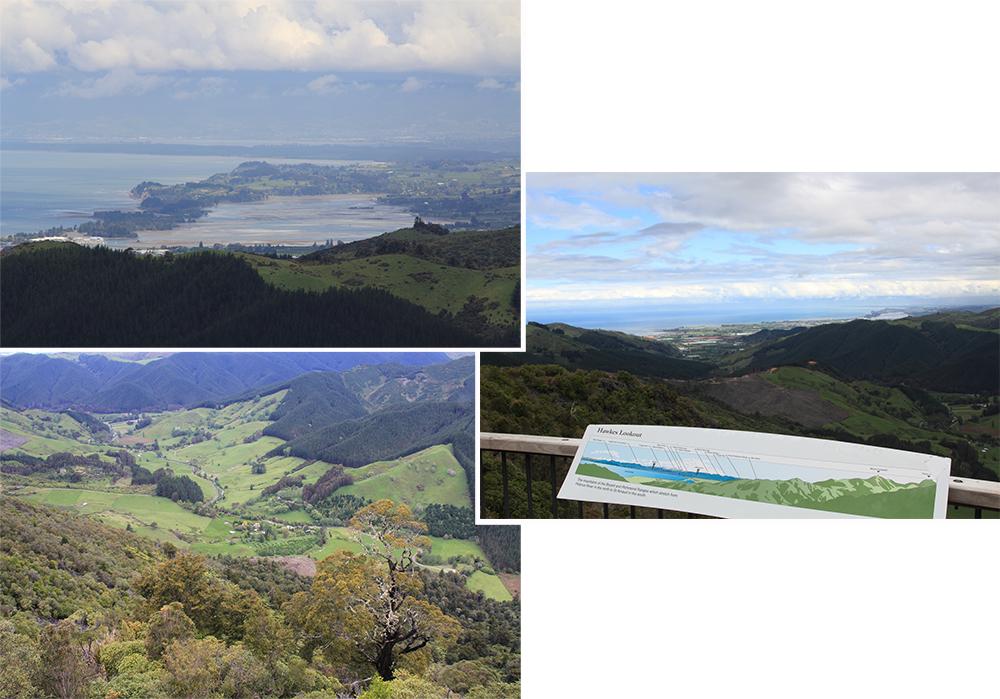 Views at Hawkes Lookout