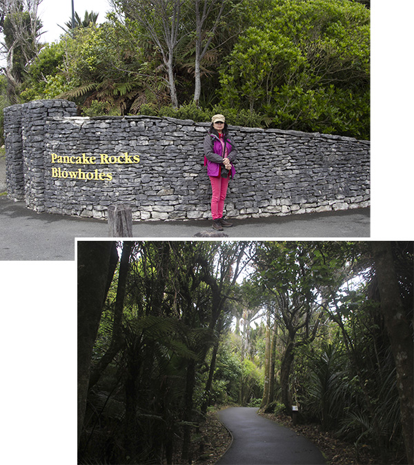 Punakaiki Pancake Rocks & Blowholes (Entrance)