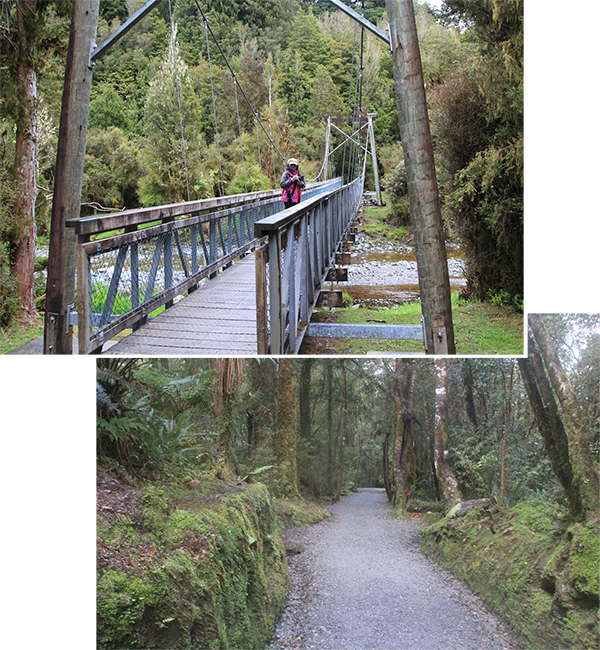 Lake Matheson walking trail