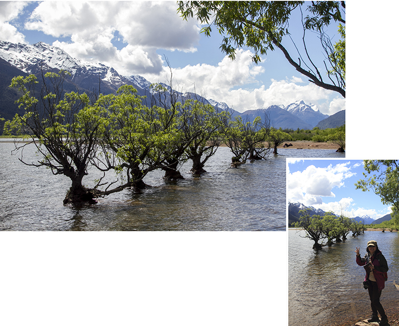 Glenorchy waterfront
