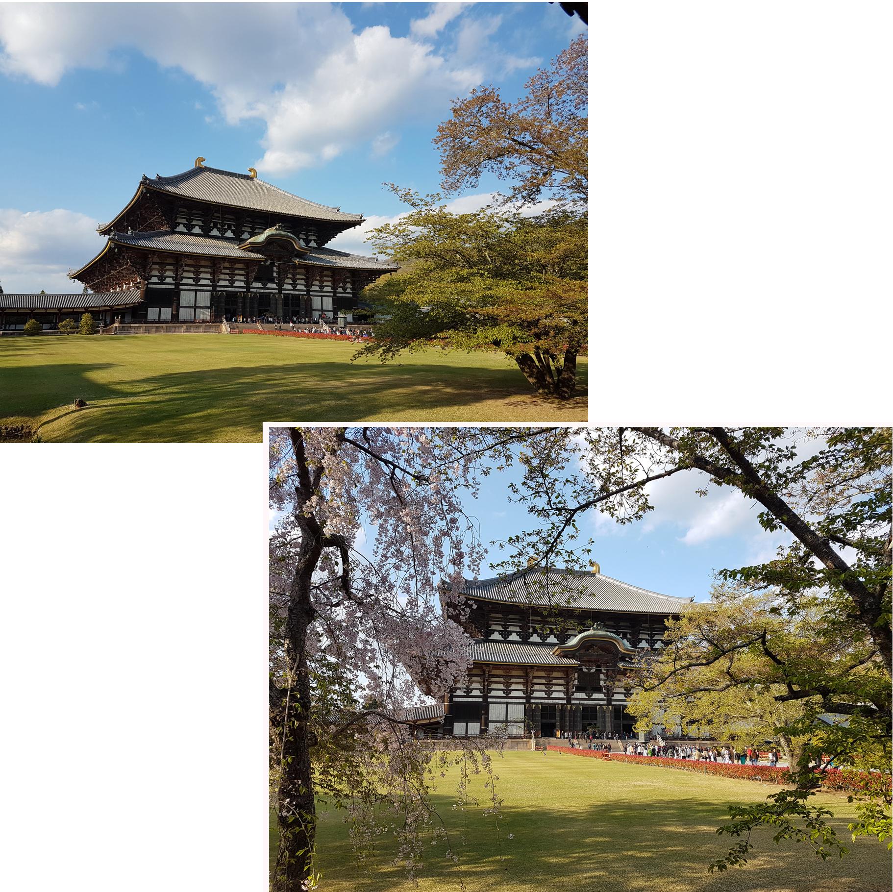 Main hall (Daibutsuden) of Todaiji