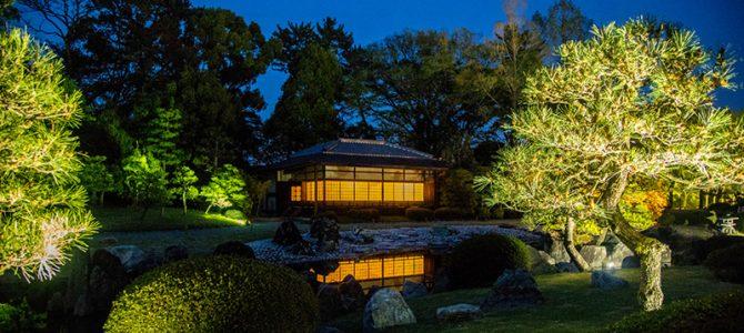 Day 6: Kyoto – Kinkakuji, Fushimi-Inari, Kiyomizu-dera & Nijo Castle