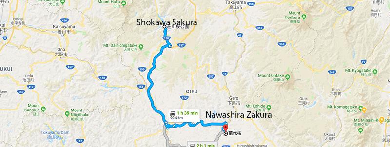 Route from Nawashira Zakura to Shokawa Sakura