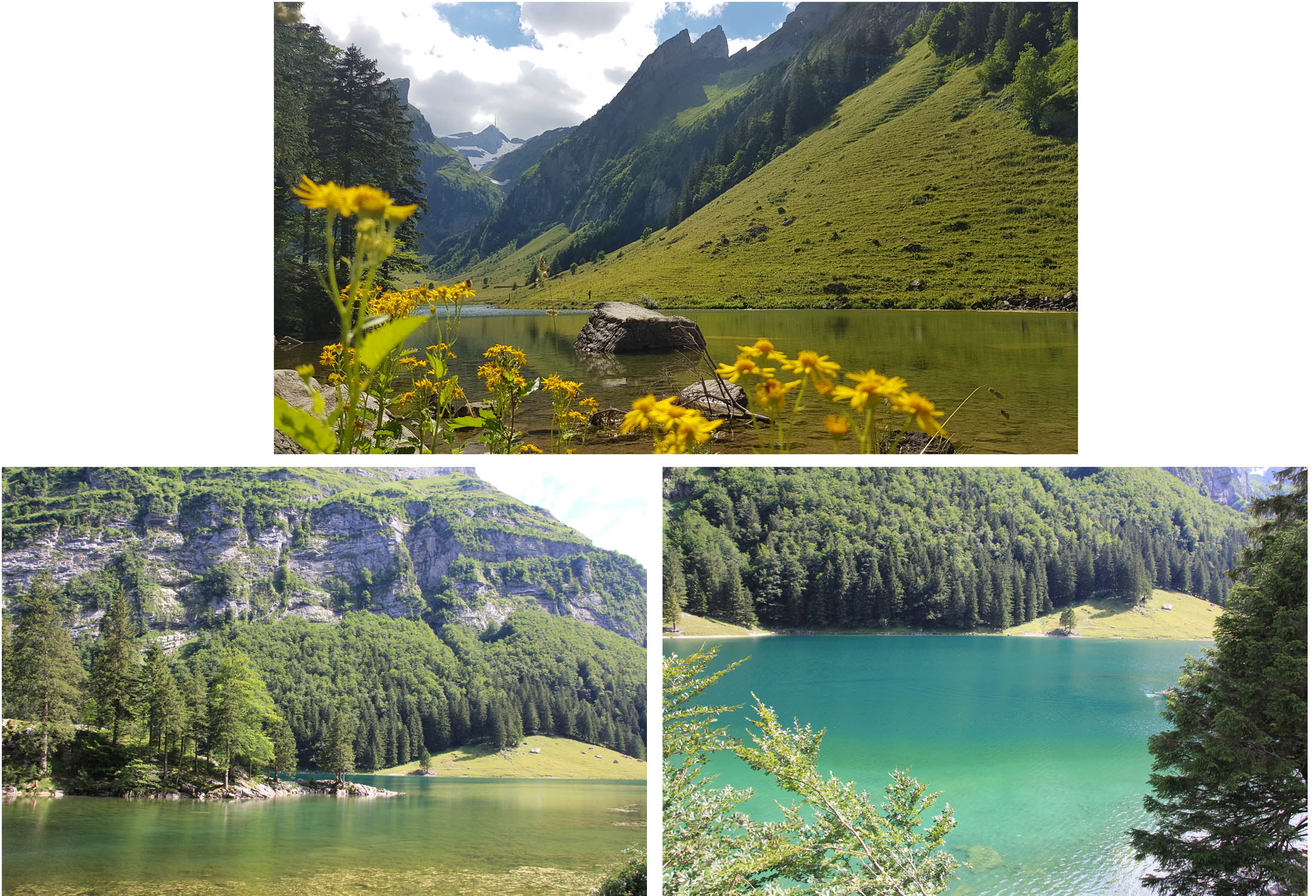 Different part of Seealpsee
