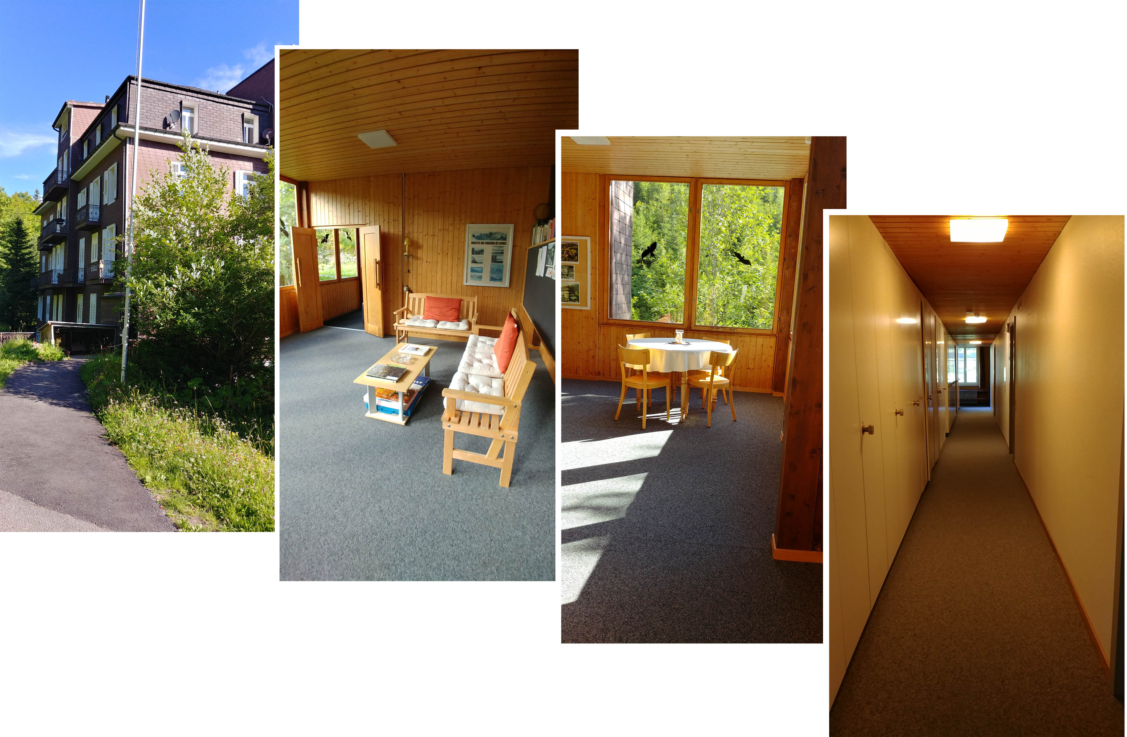 Airbnb apartment, corridor and common areas