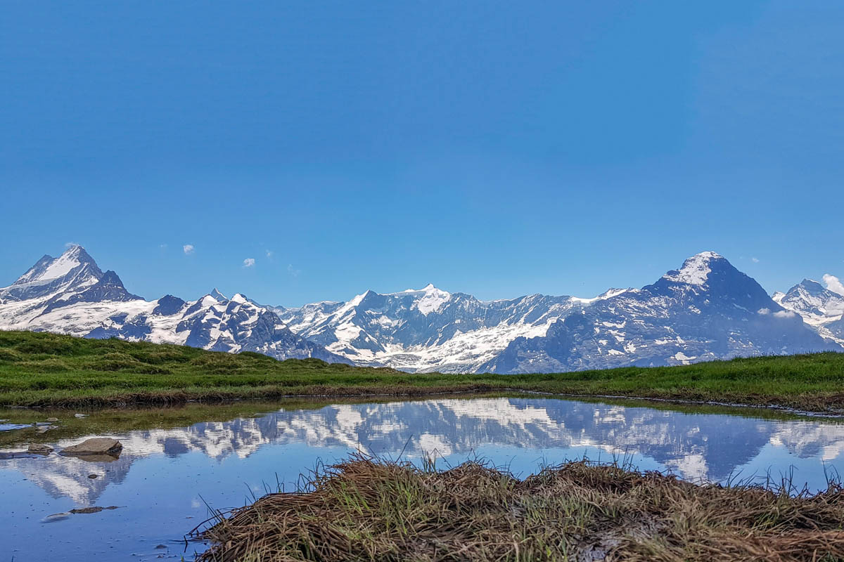 Beautiful reflection of the alps in Bachalpsee