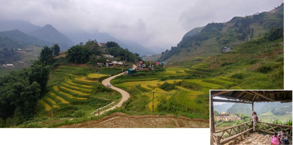 Paddy Terraces of Cat Cat Village