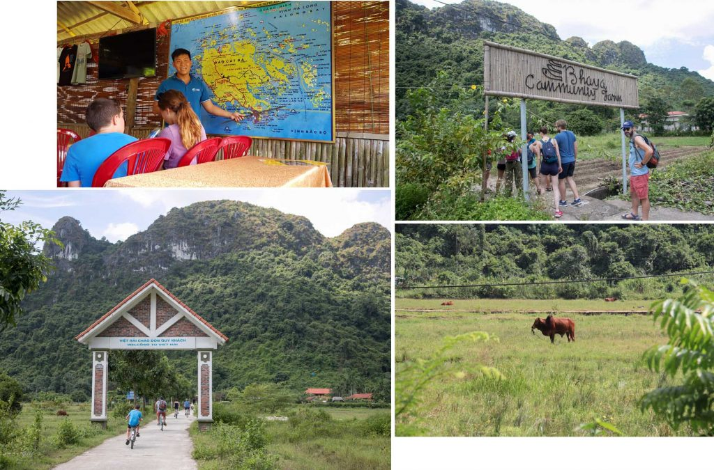 Viet Hai Village on Cat Ba Island