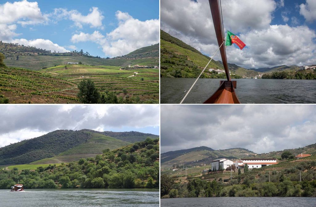 Douro vineyards as seen from the boat