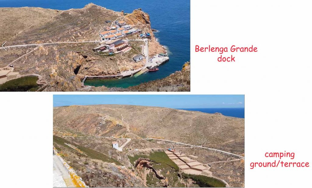 Berlenga Dock and camping terrace