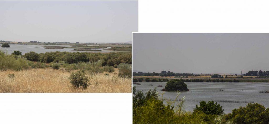 Daimiel de Tablas Wetland