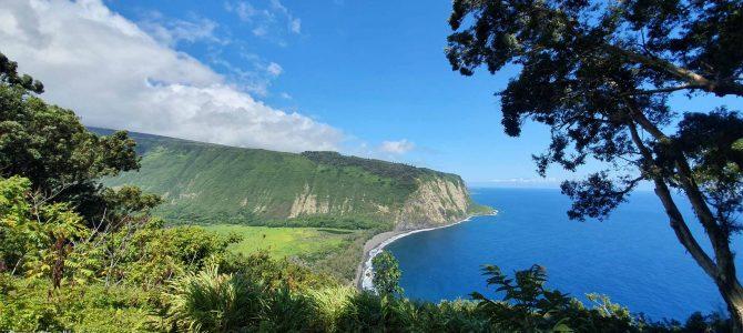 Week 4: Big Island