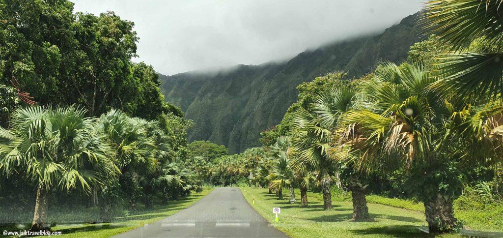 Ho'omaluhia Botanical Garden entrance driveway