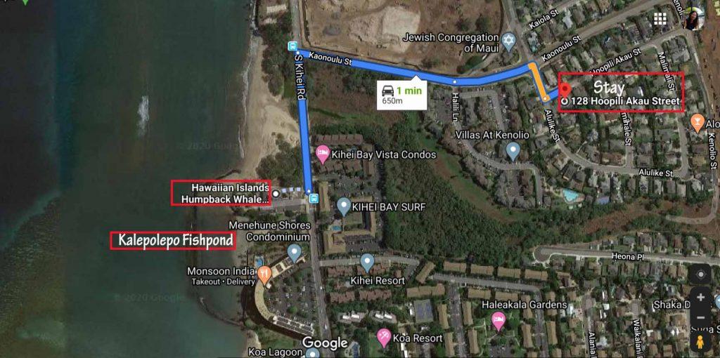 Route to Kalepolepo Beach