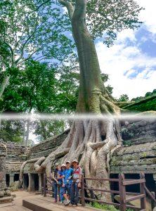 Giant Tree of Ta Prohm