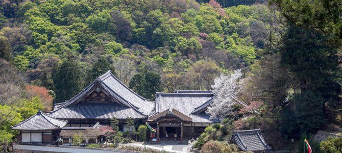 Day 5: Hasedera, Butsuryu-ji & Nara city
